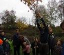 sazeni stromu 25