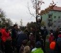 sazeni stromu 31