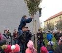 sazeni stromu 2 2