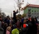 sazeni stromu 2 3