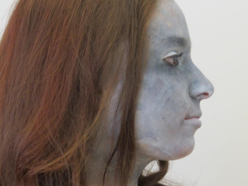 Body art obličej 2 12