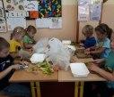 Ekologický program 5