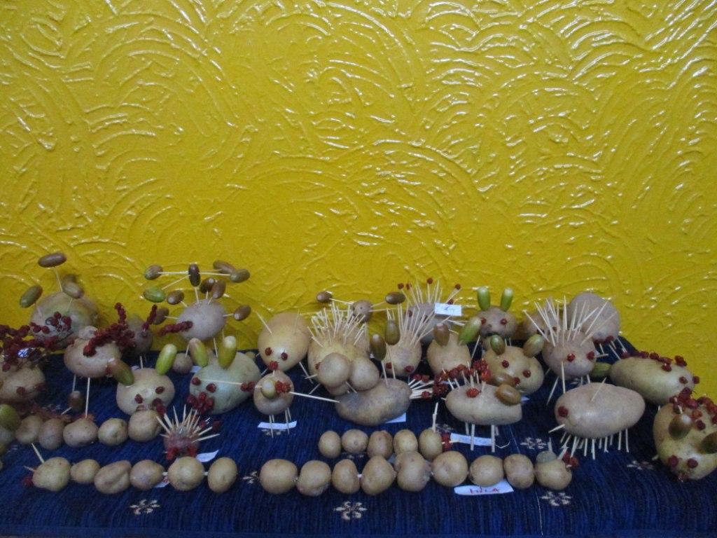 bramborový den 10