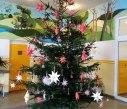 vanocni strom 6